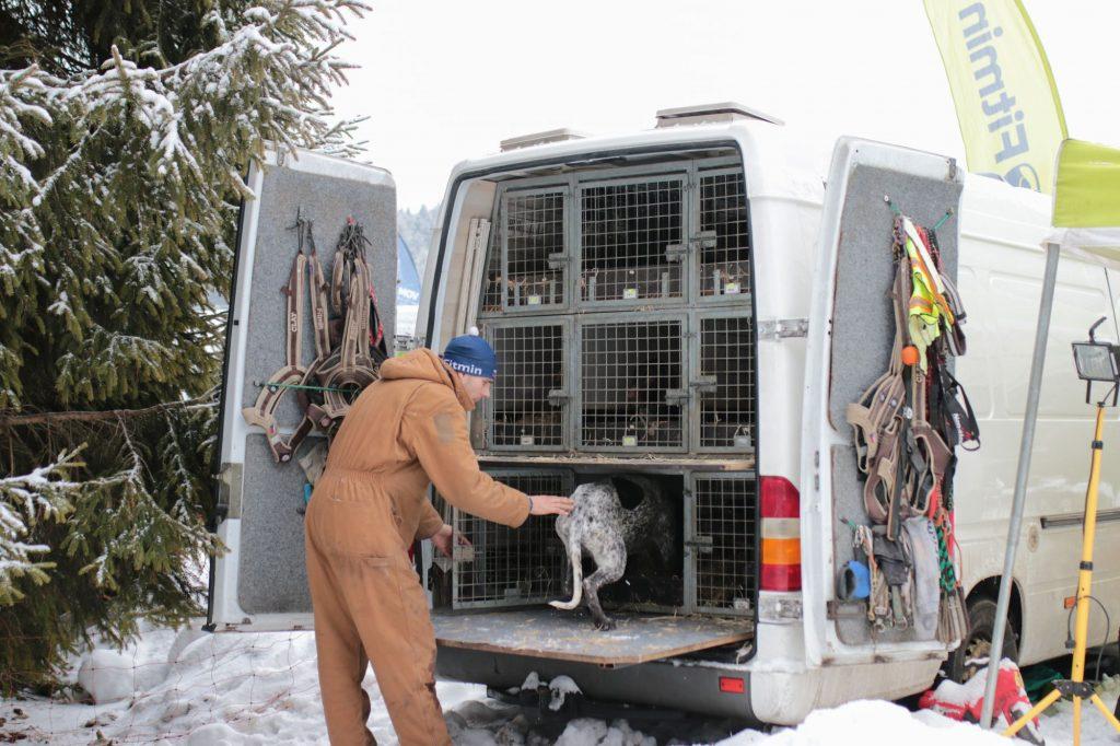 Obytné auto přizpůsobené cestování se psy.