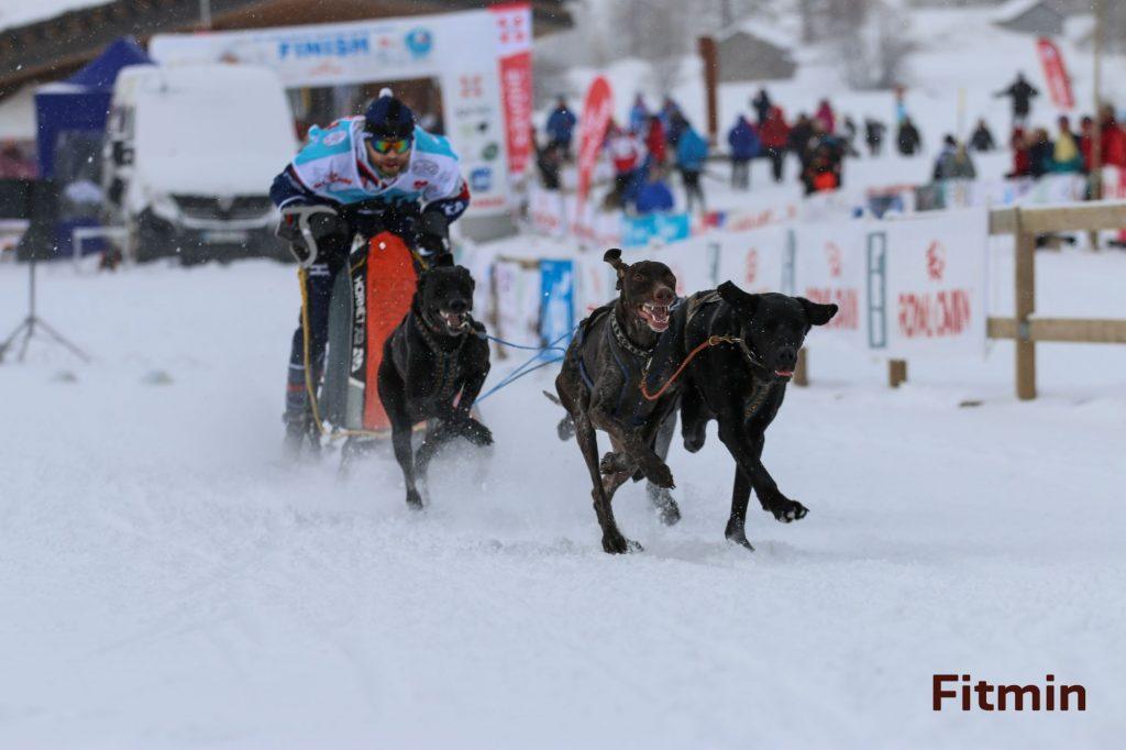 sprint 4 dogs - 9. místo na světě