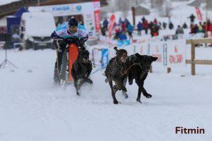 sprint 4 dogs - 9. místo nasvětě