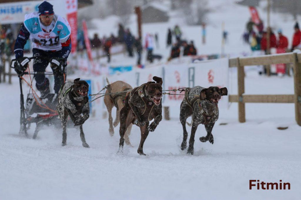 Jirka Mencák - sprint 4 dogs - 10. místo na světě